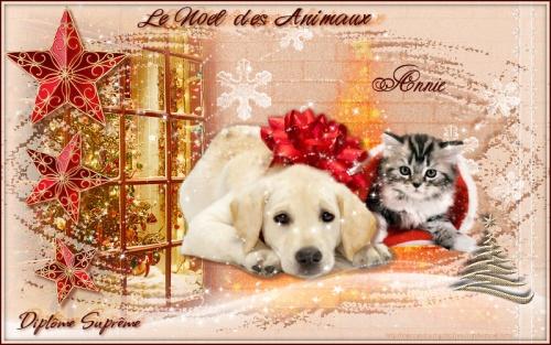 Pour avoir participé aux cartes du Noël des animaux