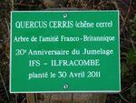 Le Bois d'IFS