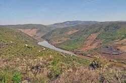 Une rivière aux mille gravures...