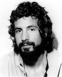 Andy Allo / cat stevens