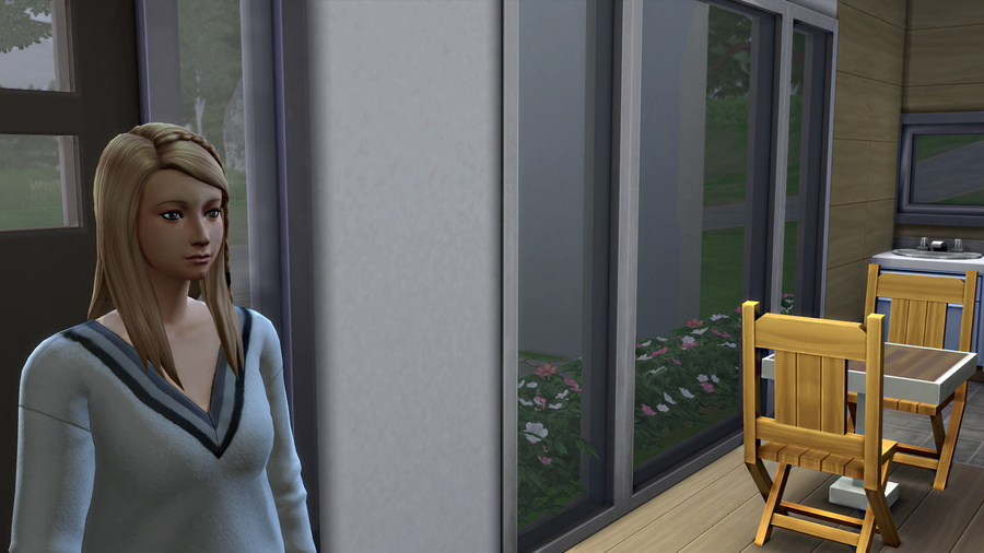 Les sims discutent