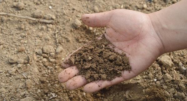 Vers la légalisation du compost humain dans un État américain?