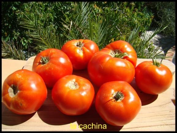 tomates--2-.JPG