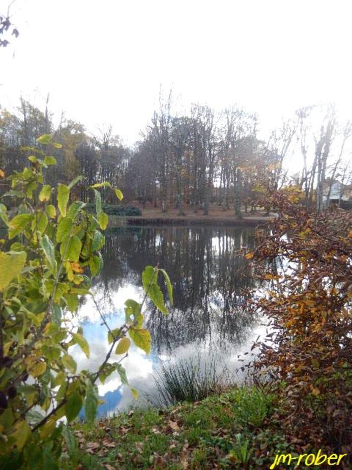 Haute-Vienne: Une idée de balade à Panazol 87 ce dimanche de Novembre 2/2