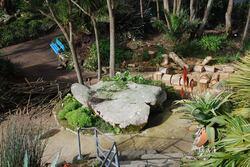 dégâts au jardin exotique de Roscoff !
