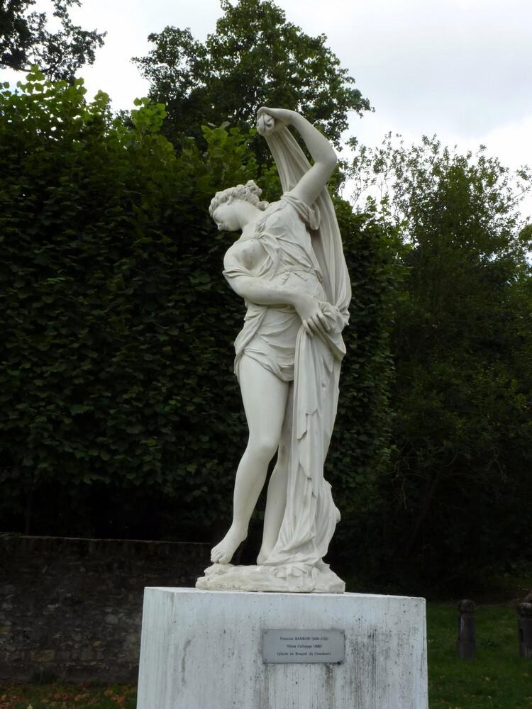 Vénus callypige