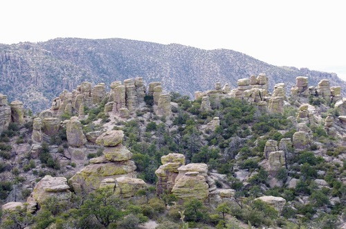 Jour 10 - Chiricahua National Monument