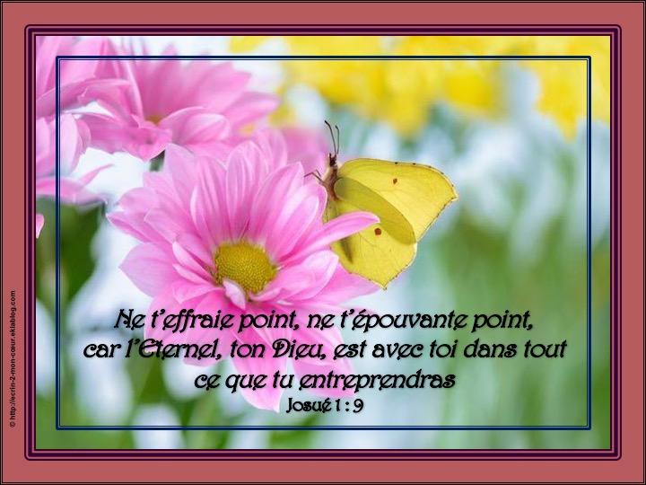 L'Eternel ton Dieu est avec toi - Josué 1 : 9