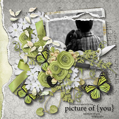 Carpe Diem, creations, scrapbooking, digital, dentelle, fanette,