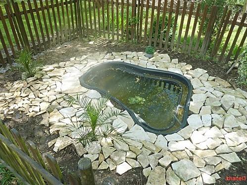 bassin2 (1)