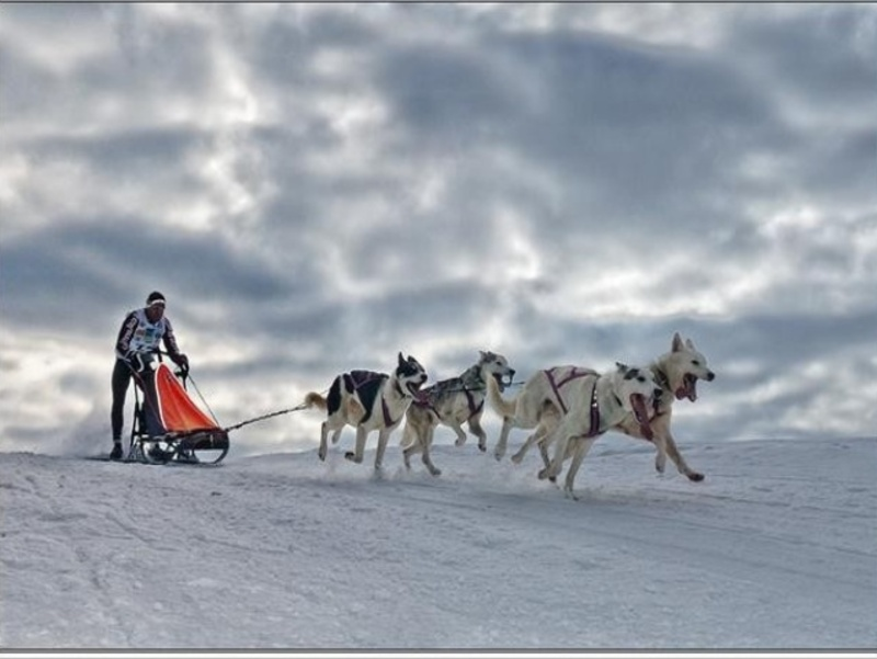 paysages d'hiver ou la campagne est endormie ,froid,neige ,fumée des chemines