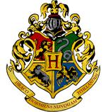 """Un anniversaire """"Harry Potter"""" pour mon sorcier (2ème partie)"""