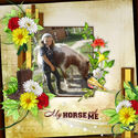 Mon cheval mon ami