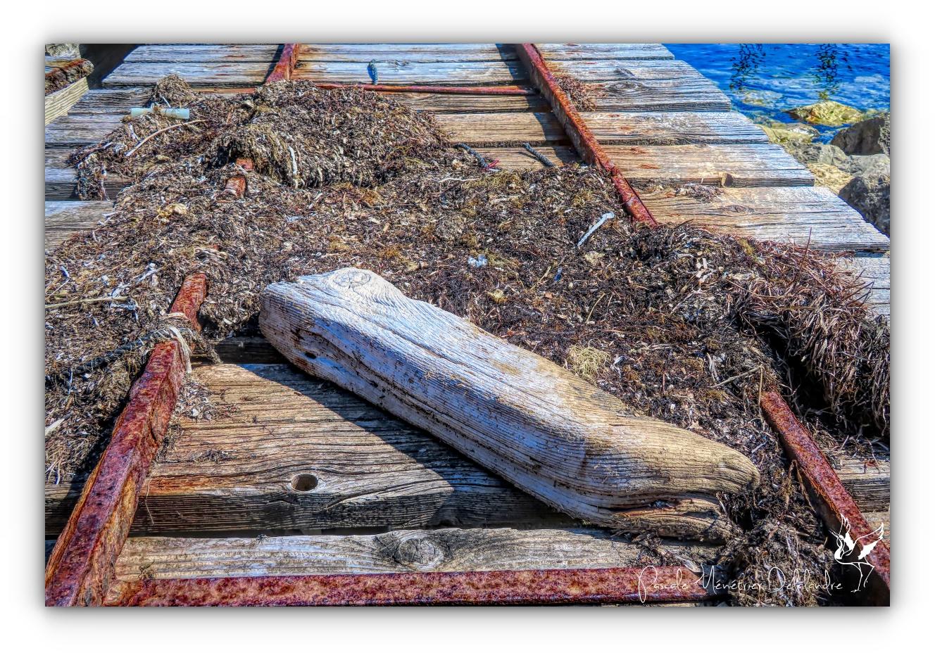 Urbex en HDR au Port conchylicole de Mèze
