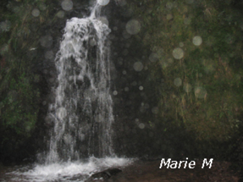 Marie M