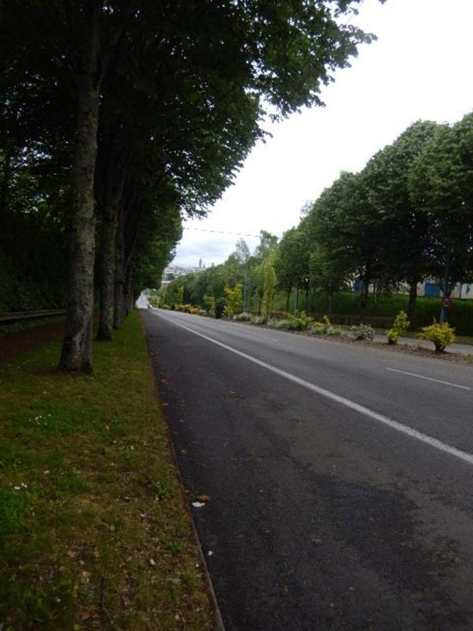 Limoges: Une découverte inattendue à l'entrée de la ville en milieu feuillu