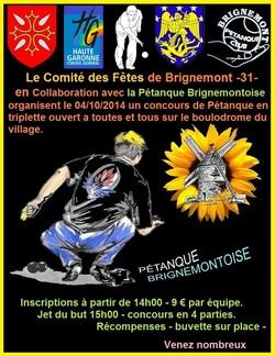 CONCOURS DE LA FÊTE LOCALE DE BRIGNEMONT 2014.