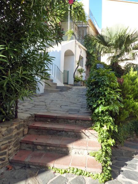 Banyuls - promenade du Cap d'Osna Végétation