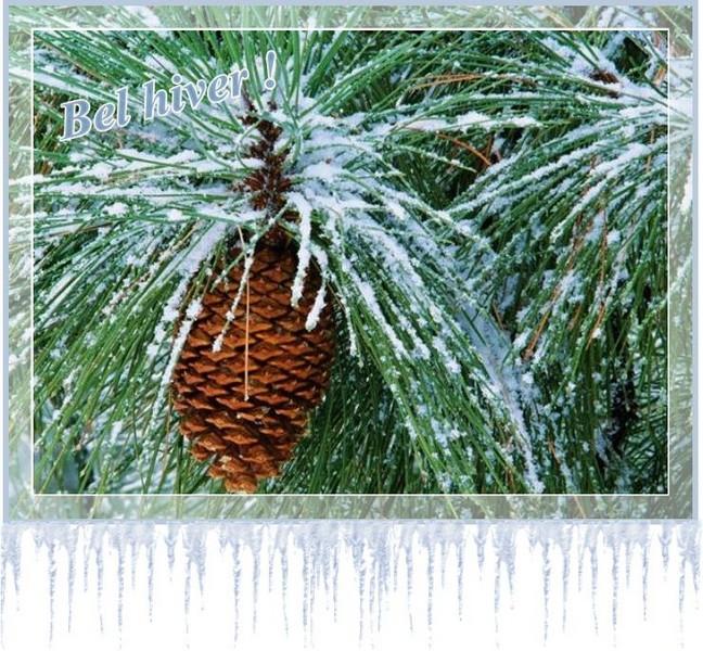 """Ce 21 Décembre  ... """"l'hiver"""" nous salue ..."""