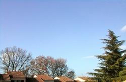 ciel froid de canard, ce mercredi 10 février
