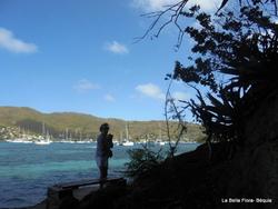 Les Grenadines- Béquia