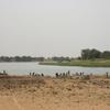 Mauritanie Le fleuve Sénégal à Sivé