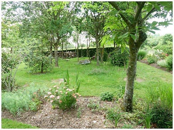 vue-sous-les-arbres-herbes---brouette.jpg