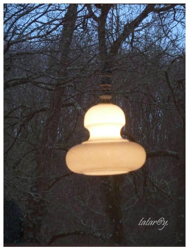 Besoin de lumière ... 4)