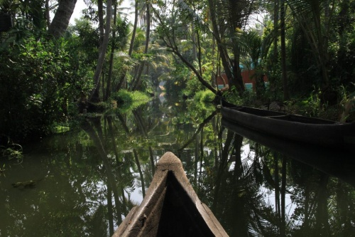 Dans les Backwaters (marais et canaux)