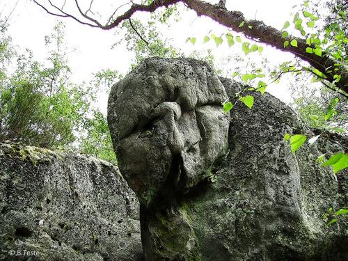 Les fantastiques rochers de Fontainebleau.