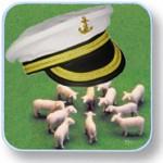 casquette de capitaine et moutons
