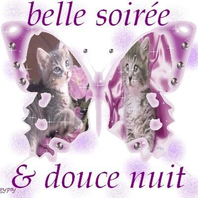 belle soirée & douce nuit violet