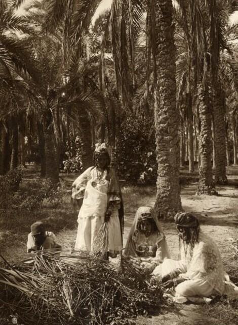 Cueilleuses des dattes.  Tunisie. 1920