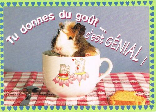 http://team.ratigan.free.fr/blogsev/postcrossing/reception/cr48.jpg