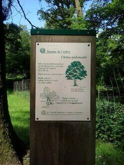 Le parc saint laurent dans les Ardennes!