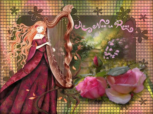 Les Roses ma passion