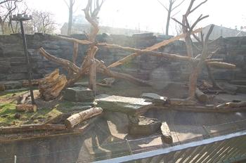 zoo cologne d50 2012 031