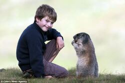 L'enfant qui murmurait à l'oreille des marmottes .