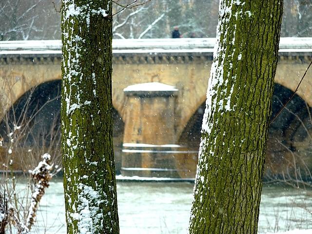 Metz quai Wiltzer 8 Marc de Metz 14 02 2013