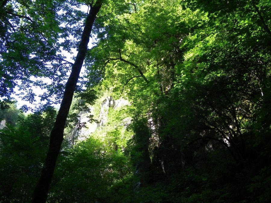 La source du Lison à Nans-sous-Saint-Anne