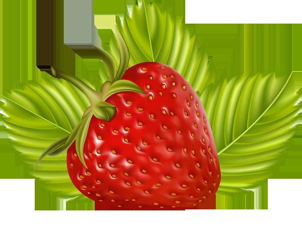 tubes fruits / légumes