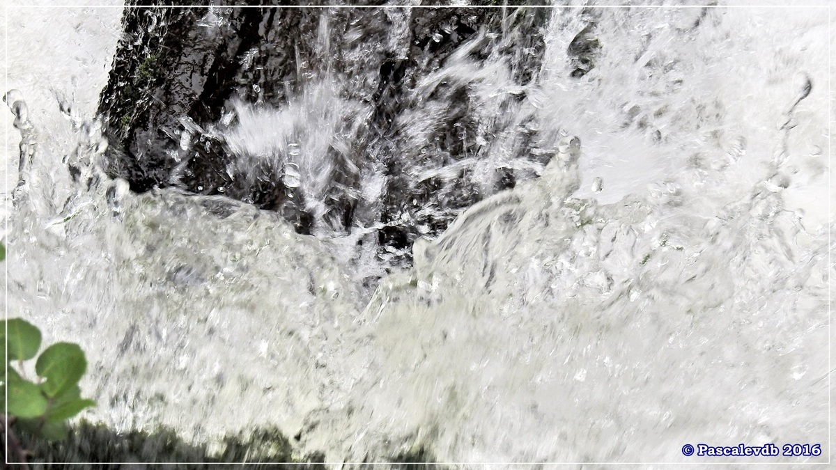 Réserve géologique de Saucats - Août 2016 - Deuxième partie - 1/6