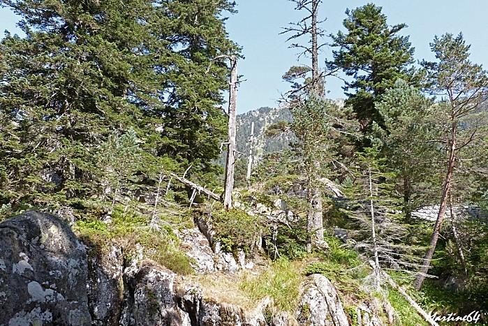 Route des cascades P1000168