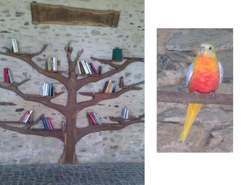 Merveilles de la nature et arbre à livres