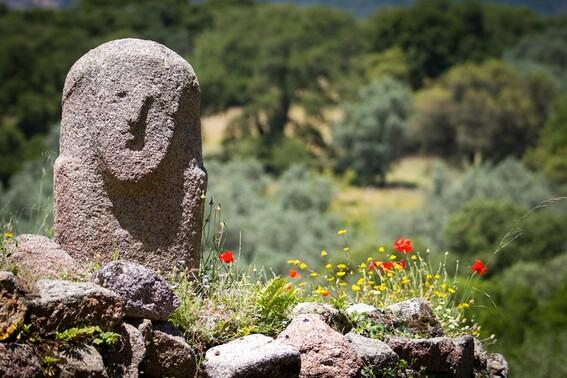 Les statues-menhirs, une énigme ?