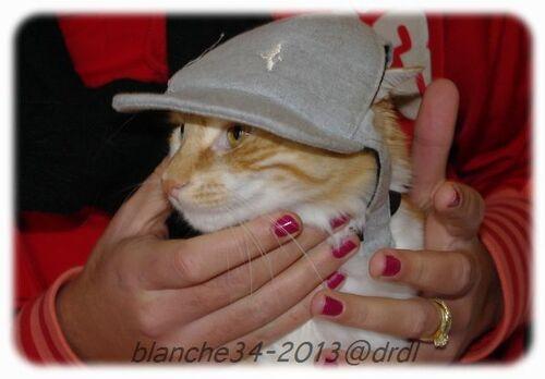 sony-casquette