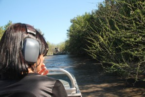Everglades 2359