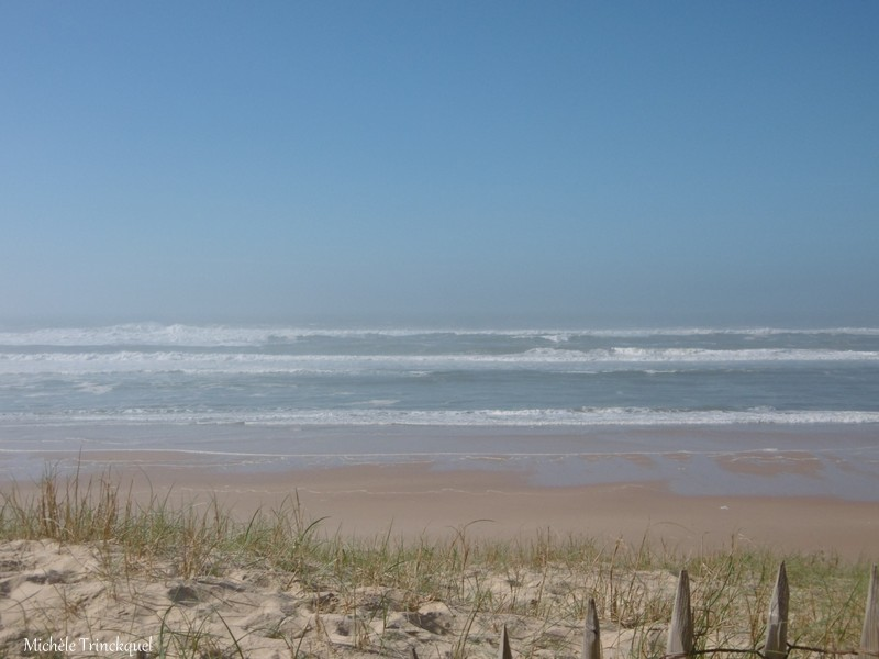 Une balade à la plage de la Lette Blanche, le 14 février...
