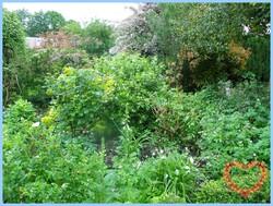 le jardin d'Elyane