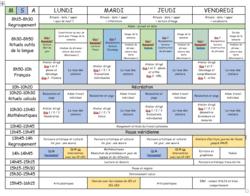 Emploi du temps du dispositif et rôle de l'AVS-co